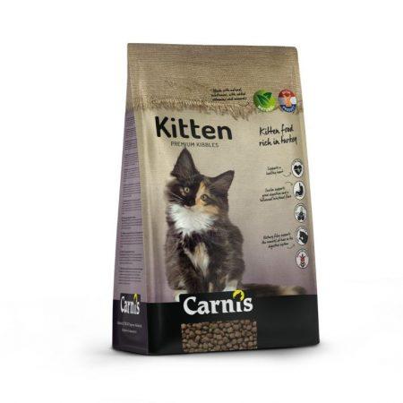 Carnis kitten